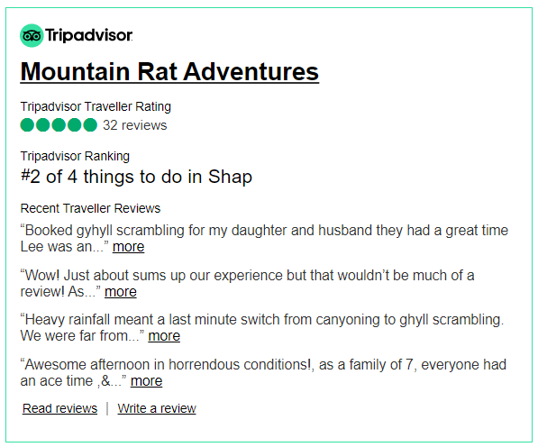 2020 tripadvisor review snippet